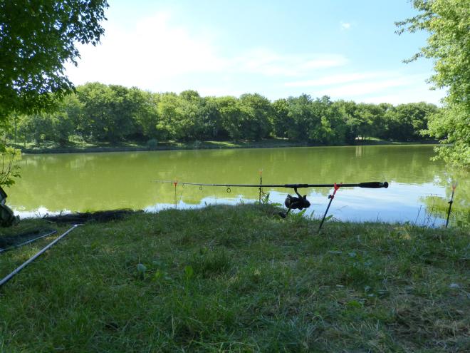 horgásztó